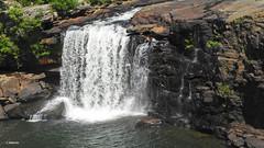 Little River Falls (Suzanham) Tags: waterfall nature alabama fortpayne river canyon littlerivercanyonnationalpreserve rocks