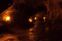 Thurston Lava Tube (bfluegie) Tags: bigisland hawaii unitedstates hawaiivolcanoesnationalpark volcano lava