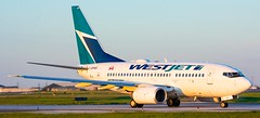 Westjet 737-600 at Toronto Pearson International Airport (Sonny Photography) Tags: westjet 737 736 wja boeing vehicle transportation plane aviation cyyz yyz toronto cgpws