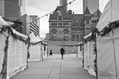 Toronto 2018_362 (c a r a p i e s) Tags: carapies cityscapes 2018 canada ontario toronto cityhall nikondf bw blackwhite blancoynegro architecture arquitectura fotografiaurbana urban urbanphotography urbanidad urbvanidad urbvanity urbanphoto streetphoto streetphotography streetlife