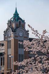 Koriyama _MG_8247 (阿Len) Tags: 2019 japan tohoku fukushima koriyama sakura さくら ふくしま 平成最後の桜 日本 東北 櫻花 福島 郡山 郡山公會堂 郡山市 福島縣 鐘樓