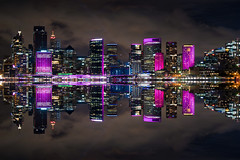 sydney city (Greg M Rohan) Tags: paisajeurbano pink clouds skyscrapers skyscraper vivid color colour longexposure nightlights nightphotography lights sydneyharbour building buildings architecture skyline cityscape sydneycity australia sydney d750 2018 nikon nikkor 城市景观 都市の景観 色 顏色 悉尼 シドニー 生動