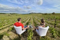A la tienne Chéri :-) (Thierry.Vaye) Tags: delphine julien lardoisedumarché sancerre vignoble vignes restaurant berry cher samyang 14mm f28