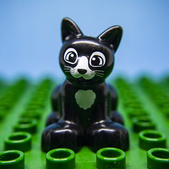 Superstition - [MacroMondays_20190527] (Arranion) Tags: superstition macromondays macromonday black cat blackcat lego macromania closeup duplo toy hmm