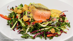 Pan-fried salmon with homemade Hollandaise sauce and slaw-like salad (garydlum) Tags: almonds cabbage capsicum hollandaisesauce kale redendivelettuce salmon canberra australiancapitalterritory australia