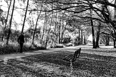 Afternoon stroll. (Ian Ramsay Photographics) Tags: nepeanrivercyclewaycamdencamden newsouthwales australia stroll elderly man walkingstick spoken softly trees admired exchanged afternoon monochrome