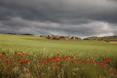 Pueblo de fantasma (Nora077) Tags: navarra spain paisaje landscape nature los arcos noratoth nora toth