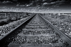 On the right track (Gullivers adventures) Tags: railroad railway rail track train sleepers clouds ireland bnw blackandwhite monochrome colorblind fields