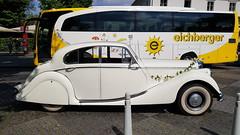 Kontraste (1elf12) Tags: bus auto jaguar oldtimer reisebus hochzeit blumenschmuck brühl germany deutschland