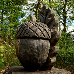 Giant Acorn (goatsgreetings) Tags: balloch loch lomond glasgow scotland sculpture wood publicart artwork acorn country park