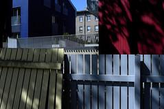 Fence in the Hood (Andrii Mur) Tags: tallinn estonia leicax1 ngc