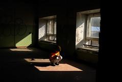 Abandoned Windows (Andrii Mur) Tags: tallinn estonia leicax1