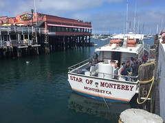IMG_5471.jpg (Snoop Baggie Bag) Tags: california whalewatching 2019 holiday monterey unitedstatesofamerica