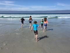 IMG_E5419.jpg (Snoop Baggie Bag) Tags: ezra carmel amélie éowyn blake natalie beach california 2019 holiday sea carmelbythesea unitedstatesofamerica