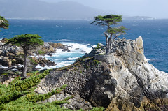 RJB_7642.jpg (Snoop Baggie Bag) Tags: california pebblebeach 2019 holiday 17miledrive