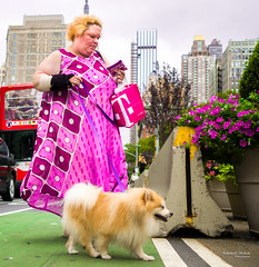 The New Yorkers - Walking the dog (François Escriva) Tags: street streetphotography us usa nyc ny new york people candid olympus omd photo rue sun light woman colors sidewalk manhattan dog walking purple pink yellow green buildings bag flowers bus