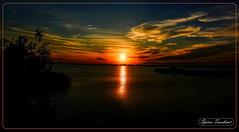 Ηλιοβασίλεμα στη Μακεδονία - Θεσσαλονίκη (Spiros Tsoukias) Tags: hellas macedonia thessaloniki greece axiosdelta nationalpark flamingo ελλάδα μακεδονία θεσσαλονίκη καλοχώρι γαλλικόσ αξιόσ λουδίασ αλιάκμονασ εθνικόπάρκο δέλτααξιού υδρόβιαπτηνά φλαμίνγκο φοινικόπτερα ερωδιοί αργυροπελεκάνοι αργυροτσικνιάδεσ λευκοτσικνιάδεσ βαρβάρεσ γεράκια πάπιεσ φαλαρίδεσ κύκνοσ κύκνοι πελεκάνοσ κορμοράνοσ στρειδοφαγοσ κοκκινοσκέλησ σταχτοτσικνιάσ ποταμογλάρονα χουλιαρομύτα γλάροσ αβοκέτα καλαμοκανάσ λίμνεσ φύση ποτάμια θάλασσα βουνά πεδιάδεσ ηλιοβασίλεμα ανατολήηλίου πουλιά ζώα lakes nature rivers sea mountains plains sunset sunrise birds animals ποταμοί λιμνοθάλασσεσ ουρανόσ σύννεφα