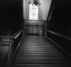 (Victoria Yarlikova) Tags: film analog monochrome 120mm holga holga120n toycamera plasticlens fomapan mediumformat vintage scan epsonv700 torino grain blackandwhite stairs darkroom palace