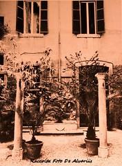 1987 Palazzo Ricci Parracciani, il secondo  cortile, P.za Ricci171 (Alvaro ed Elisabetta de Alvariis) Tags: palazzoricciparacciani architettonannidibacciobigio rioneregola romapiazzaricci viagiulia raccoltafotodealvariis 1987palazzoricciparraccianiilsecondocortilepiazzaricci171 fotolpratesi