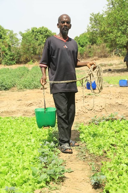 Un bénéficiaire AGR à Doumba Commune de Benkadi Founia