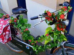 ring my bell (mujepa) Tags: bike vélo bicyclette fleurs flowers bell sonnette