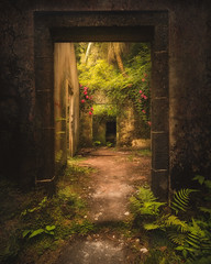 Taken over (KasparsDz) Tags: portugal azores house nature begetation ruins growth explore dzenis photo nikon mistical moody