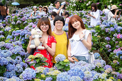 大賞園繡球花 (Javier Lun) Tags: 繡球花 陽明山 大賞園 人像 寫真 攝影 花卉 家庭 出遊 紫色 紅色