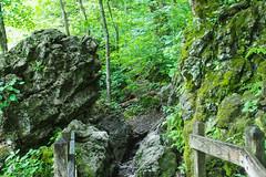 IMG_2752 (derren.dettloff) Tags: haha ha tonka mo mid missouri state park hike river sunday funday