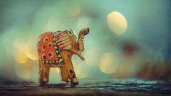 Elephant for good luck (Ro Cafe) Tags: lensbaby mm macromondays nikond600 superstition twist60 bokeh macrofilters macro miniature elephant textured