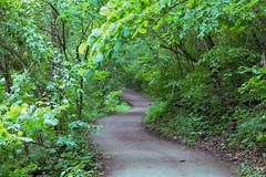IMG_2704 (derren.dettloff) Tags: haha ha tonka mo mid missouri state park hike river sunday funday