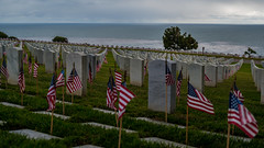 Fort Rosecrans National Cemetery (Daren Grilley) Tags: navy veterans memorial day honor courage brave heroes fallen united states san diego sea ocean remember