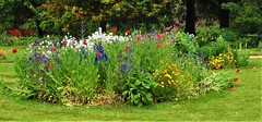 A Flower Bed In Osterley Park - London. (Jim Linwood) Tags: osterleypark london england