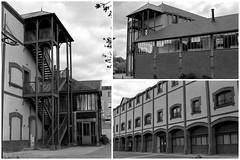 Réhabilitation industrielle à La Ferté-Bernard (Philippe_28) Tags: lafertébernard sarthe 72 france europe argentique analogue camera photography photographie film 135 bw nb