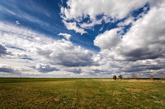 Happiness (Pásztor András) Tags: field open grass trees sky clouds spring windy blue white green colorfull sigma 1020mm d5100 dslr nikon andras pasztor photography hungary