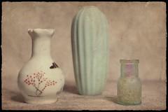2 Vases and a bottle (DayBreak.Images) Tags: tabletop stilllife vases vintage depressionglass pharmacy bottle canondslr meyeroptic 50mm trioplan ringlight photoscape texture border home