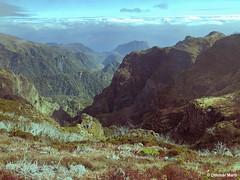 Rugged Landscape in the Center of Madeira (OthmarMarti) Tags: achadadocastanheiro geo:lat=3272415278 geo:lon=1691783056 geotagged iphone8 madeira portugal prt ribeirofrio madeiraisland island landscape