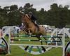 Cheshire Horse Show 187