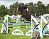Cheshire Horse Show 234