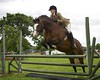 Cheshire Horse Show 212
