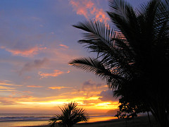 Sunset (Colorado Sands) Tags: jaco costarica centralamerica pacific seaside palmtree sandraleidholdt sunset puravida costarican centralamerican coast beach pacificocean