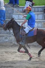 Moazzam Ali Ahmad (Bizhown Photography) Tags: polo gilgit gilgitbaltistan damotevalley damotevalleygilgit pakistan sports horse free style moazzam ali ahmad