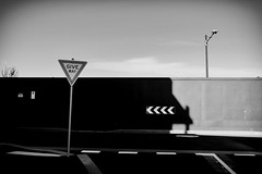 Give way (Leon Sammartino) Tags: monochrome film post process photoshop street arrows give way turn left shadows australia docklands