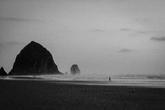 Everyone becomes Invisible. (Marie-Laure Even) Tags: 2004 america american américain amériquedunord and automne autumn bw beach black blackandwhite blanc blur cannonbeach coucher coucherdesoleil et etatsunis evening fall landscape marielaureeven mer mouette nb nature noir noiretblanc northamerica northernamerica ocean oregon pacificocean paysage people plage sea seagull september septembre soir soleil sunset travel usa unitedstatesofamerica voyage white wild wilderness природа закат
