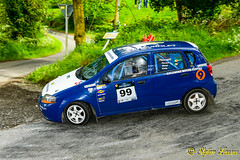 DSC_5248 (Salmix_ie) Tags: cavan stages rally 26th may 2019 hotel kilmore motor club championship motorsport ireland wilton recycling sport nokon nikkor d500 sligo pallets border finish line wwwwcavanmotorclubcom fireprotection
