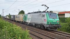 BB 27081, Daours - 23/05/2019 (Thierry Martel) Tags: daours locomotiveélectrique bb27000 sncf
