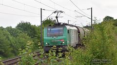 BB 27009, Daours - 23/05/2019 (Thierry Martel) Tags: daours locomotiveélectrique bb27000 sncf