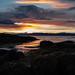 Sunset and seaweed
