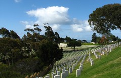 Never Lost Twice (Rand Luv'n Life) Tags: odc our daily challenge fort rosecrans national cemetery point loma san diego california memorial day service stars strips grave stone flags hillside grass repetition trees clouds sky outdoors