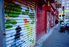 """Pell St Painted Gates, NYC • <a style=""""font-size:0.8em;"""" href=""""http://www.flickr.com/photos/8217077@N08/47946938637/"""" target=""""_blank"""">View on Flickr</a>"""
