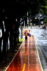 0464 (*Ολύμπιος*) Tags: sãopaulo people persone persons pessoas cidade city città cittè ciudad ciutat street streetphotography streetlife streetphoto gente girl garota giovanni girls garotas fotoderua foto femme domingo domenica daybyday diaadia donna woman women mulher man